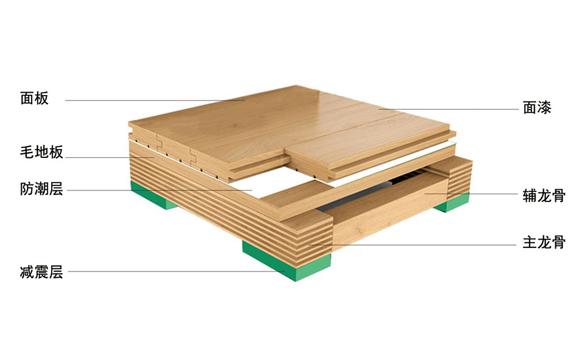 运动地板结构介绍——单层主辅龙8国际平台入口五层结构